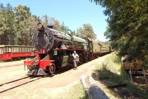 Parni lokomotiva v Pembertonu