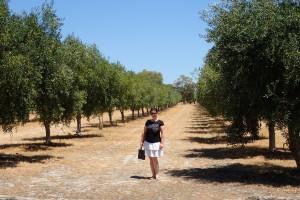 Veronika mezi Olivovniky